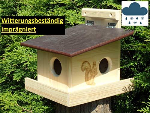 Witterungsbeständiger XXXL Eichhörnchen Kobel/Futterhaus aus hochwertigem Vollholz, hochwertig Imprägniert, deutsches Qualitätsprodukt von Hand gefertigt im Bayerischen Wald (imprägniert)