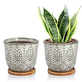 Generous 6 Inch Planter Ceramic Succulent Flower Pot Indoor with Bamboo Tray Set of 2