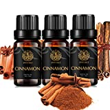 Juego de 37 tipos de aceites esenciales para aromaterapia, 10 ml, aceite esencial de rosas 100 % puro, kit de aceites esenciales para humidificador, conjunto de aceites esenciales para masaje, hogar