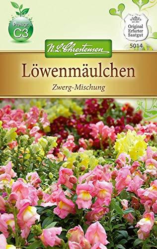 N.L. Chrestensen 5014 Löwenmäulchen Zwerg-Mischung (Löwenmäulchensamen)
