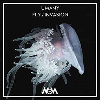 Fly / Invasion