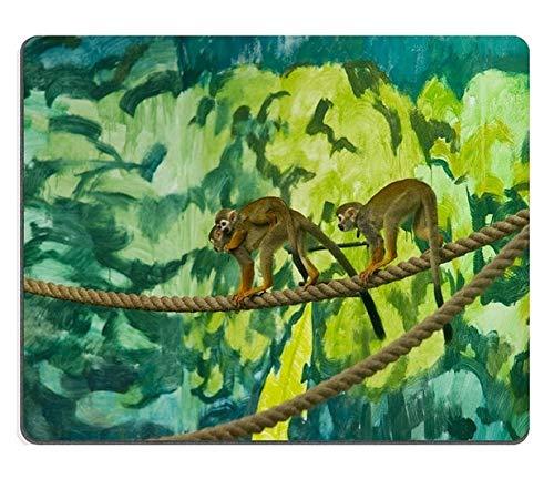 Yanteng Alfombrilla de ratón Juego Alfombrilla de ratón Alfombrilla de ratón de Goma Natural Familia de Monos Ardilla M0A05199