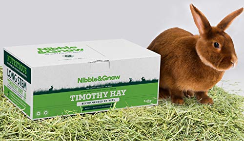 Nibble&Gnaw, Heno Timothy para Conejos, Conejillos de Indias, Chinchillas, degús y hámsters |1,6Kg| Ultra Premium, Fresco, Verde y de Calidad, Heno Canadiense de Tallo Largo