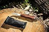Premium Pilzmesser braun, Naturfarben mit Bürste und Lineal, Holzgriff rostfreie Edelstahl Klinge, Champignon Trüffel Taschenmesser mit Tasche - Klappmesser - Freizeitmesser - Jagd Pilz Messer