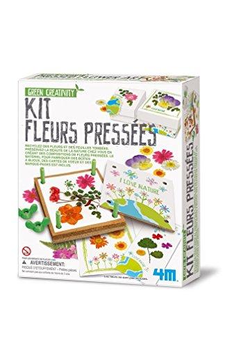 4M - Kit de Flores prensadas, 5664567, Multicolor