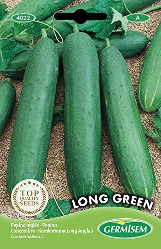 Germisem Long Green Semi di Cetriolo 3 g