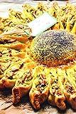 Zoom IMG-1 le torte salate di casa