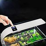 happygirr - Luz LED para Acuario, con Clip, 10 W, con Enchufe Europeo, Transformador Tricolor con indicador de Temperatura