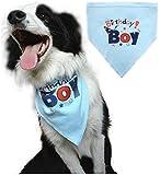 Dog Birthday Bandana Pet Scarf Blue