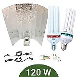 Kit de iluminación bajo consumo 120W CFL Agrolite Crecimiento + Floración + Reflector Stuko