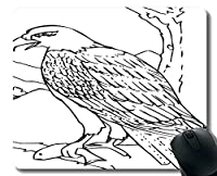 ゲーミングマウスパッドカスタム、Taming Eaglesパーソナライズされた長方形のゲーミングマウスパッド