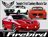 Desperate Enterprises Pontiac Firebird Tribute Tin Sign, 16