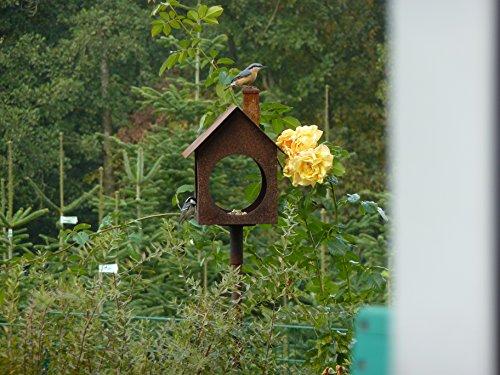 Albert Hechinger Edelrost Vogelhaus Villa Birdy