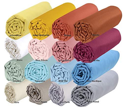 Draps housse coton Bio Divers coloris
