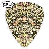 William Morris Il existe 12 types de médiators pour guitare électrique, basse ou ukulélé Color Advanced Celluloid Picks