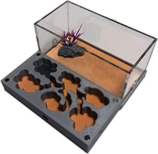 Insect Villa Ant Farms - Easy to Install Ant House Kids Science Educational 3D Plane Nest 5.5x2.8x1 Inch