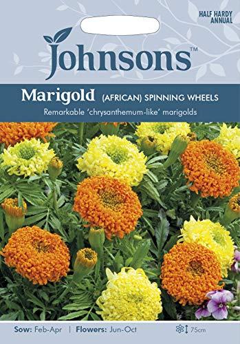 【輸入種子】 Johnsons Seeds Marigold (AFRICAN) SPINNING WHEELS マリーゴールド (アフリカン) スピニング・ホイール ジョンソンズシード