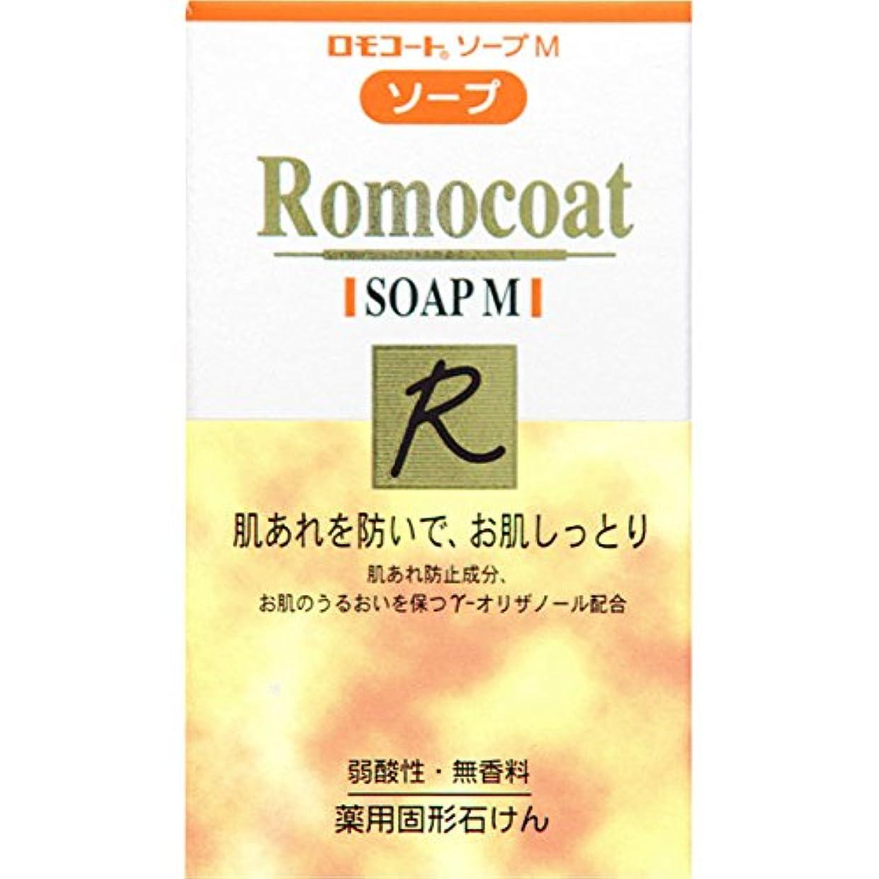 序文近傍魚全薬工業 ロモコート ソープM 60g (医薬部外品)