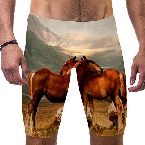 LORVIES Animal Paarden Knuffel Mannen Zwemshorts Surf Zwembroek Zwempak Snelle Droge Zwemkleding, S