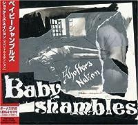 Shotter's Nation by Babyshambles (2007-12-12)
