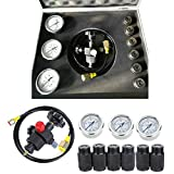 Hydraulic Nitrogen Accumulator Gas Charging System Pressure Test Kit 400bar 6000PSI Inflatable Tool Fill Gas Valve Hose Assembly Set with Case