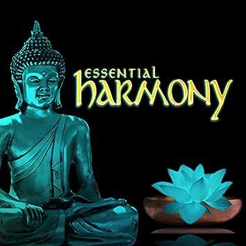 Essential Harmony