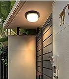 CITRA Lámpara de techo LED al aire libre Lámpara de pared moderna Accesorios de luz redonda 3000k impermeable acrílico pared luz (blanco cálido)