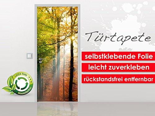 Türtapete Forest Shine im Format 90x210cm - selbstklebende Premium Folie - leicht zu verkleben ohne Blasen von Trendwände