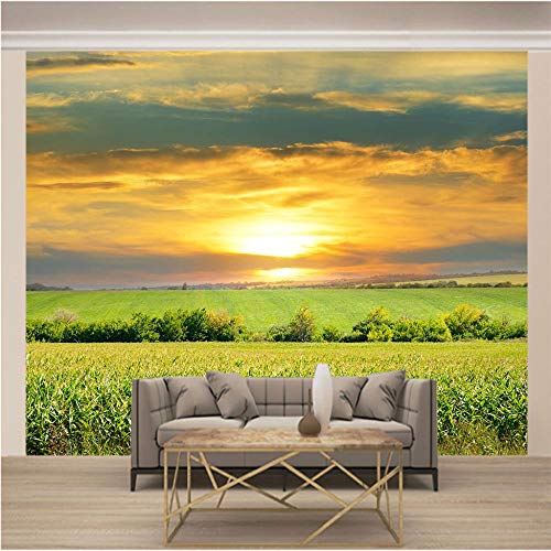 Fototapete Kinderzimmer Bauernhof Landschaft 3D Vlies Fototapete Wandbild Wandbilder Wohnzimmer Fernseher Sofa Hintergrund Tapete Moderne Wohnkultur 250x175 Cm (B x H)