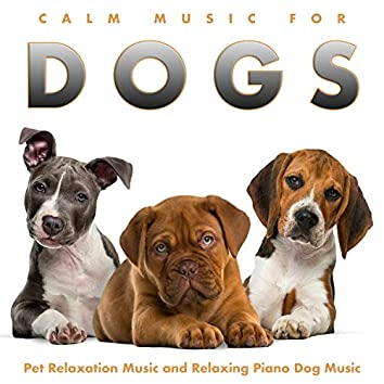 Calm Music For Dogs: Pet Relaxation Music and Relaxing Piano Dog Music