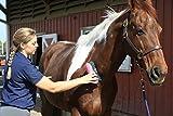 Oster 32990 Reinigungsbürste für Pferde - 3