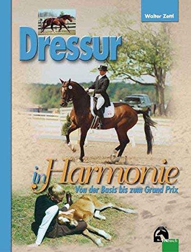 Dressur in Harmonie: Von der Basis bis zum Grand Prix