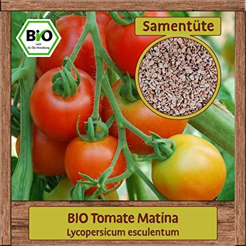 Samenliebe BIO Gemüse Samen Tomaten Matina (Lycopersicum esculentum) | BIO Tomatensamen Gemüsesamen | BIO Saatgut für 10 Pflanzen