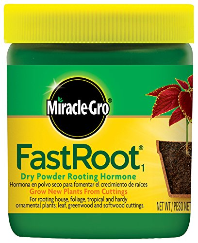 Miracle-Gro FastRoot1 Dry Powder Rooting Hormone: Houseplant and Succulent Propagation, for Rooting House, Foliage, Tropical, and Hardy Ornamental Plants, 1.25 oz