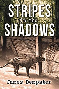 Stripes in the Shadows by [James Dempster]