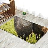 X-Large Collie Sheepdog Rounding Small Number Very Animals Wildlife Agricultural Fun Welcome Doormat Personalized Indoor Floor Mats Living Room Bedroom Bathroom Door Mat 23.6 X 15.8 Inch