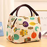 ZFLL Caja de Almuerzo,Cartoon Canvas Portable Lunch Box Bag Insulated Food Container  Picnic Thermal Food Lunch Bag Tote for Kids Women Cooler Bags,Orange
