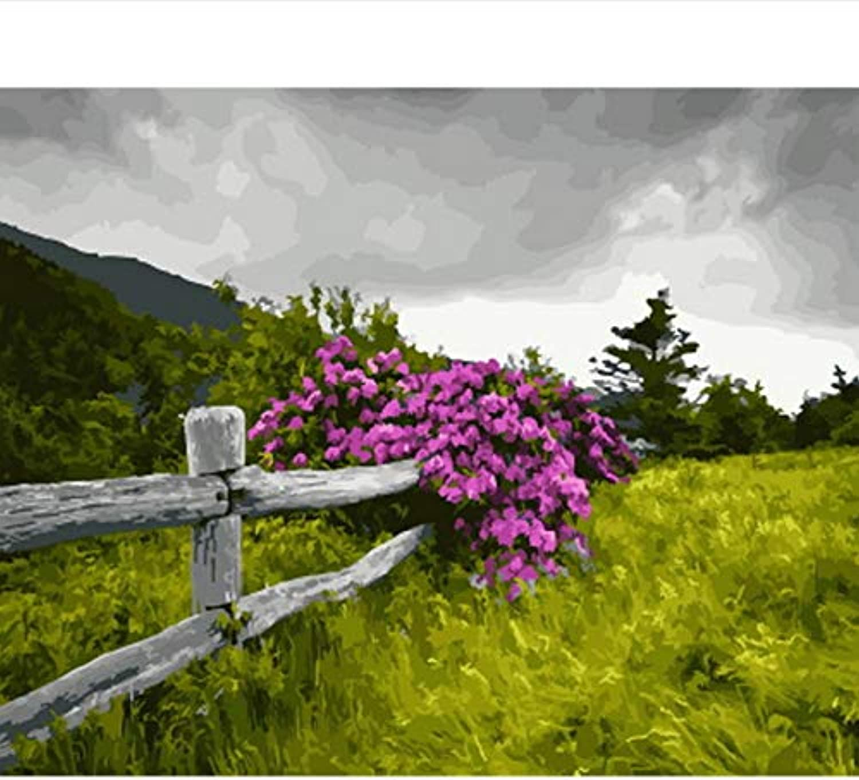 CZYYOU DIY, Ölgemälde Durch Zahlen Malen Malen Malen Nach Zahl Für Hauptdekorölbild, Malereizaun, Mit Rahmen, 40x50cm B07Q28FW8N | Leicht zu reinigende Oberfläche  1d431c