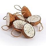 Pet Supply Uk Wild Bird Filled Suet Coconuts 30 Pack