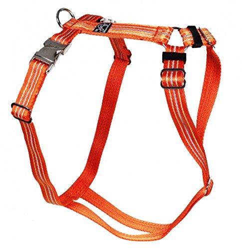 Premium Feltmann Hundegeschirr mit Alu-Max®-Metall-Steckschlössern, Soft-Nylonband Reflektierend orange 55-75 cm, 20 mm