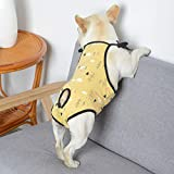 Washable Dog Diaper Jumpsuit Female Summer Spring, Soft Cotton Sanitary Pantie with Adjustable Suspender for Girl Dog Puppy, Reusable Doggies Period Pants Incontinence Small Medium Dogs Pet Underwear