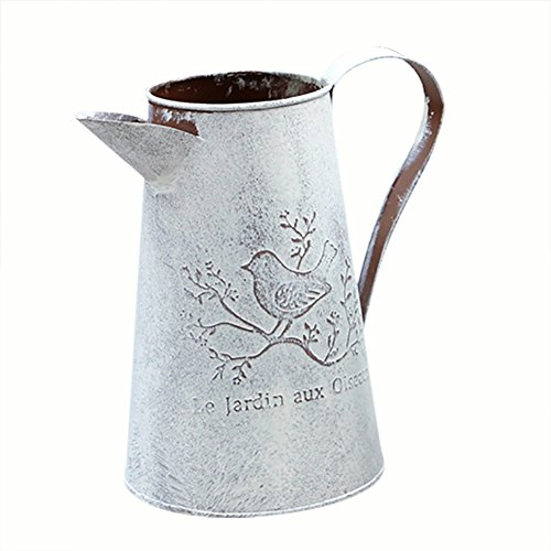 Lembeauty Arrosoir en fer de style français vintage avec motif d'oiseau