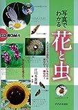 写真でわかる 花と虫 CD-ROM付