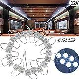 Biqing Luci Interne per Camper,60 LED Auto Interni Kit Striscia LED 12V Auto Luci Lampadine Plafoniera Luci Lettura per Camper Camion Capannone Cabina Armadio Rimorchio(20 Modulo)