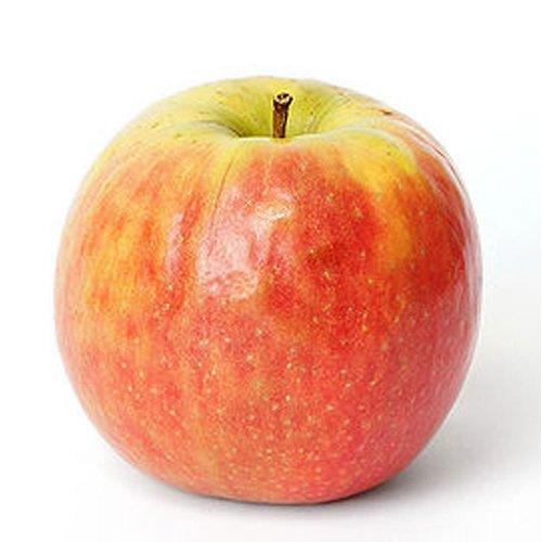 Obst & Gemüse Bio Apfel Cripps Pink (1 x 1000 gr)