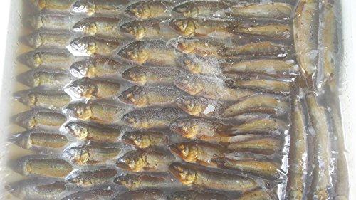 鮎 甘露煮 500g ( 50-60匹 ) 冷凍 若鮎 稚あゆ あゆ 解凍後そのままお召し上がり頂けます。