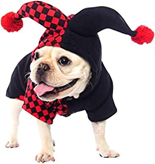 Best dog jester costume Reviews