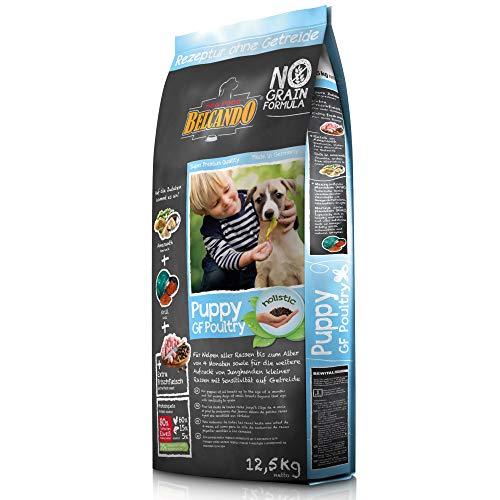 Belcando Puppy GF Poultry [12,5 kg] getreidefreies Welpenfutter | Welpenfutter ohne Getreide | Alleinfuttermittel für Welpen bis 4 Monate