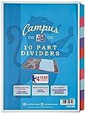 Oxford Campus – Separadores para archivador, tamaño A4, 10 unidades...