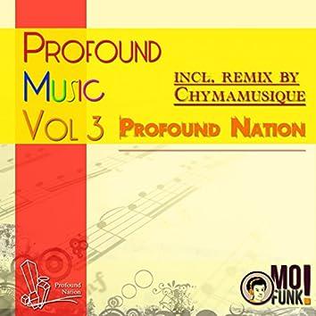 Profound Music, Vol. 3 (Incl. Chymamusique Remix)
